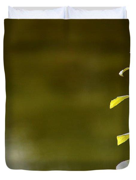 Green Morning Duvet Cover by LeeAnn McLaneGoetz McLaneGoetzStudioLLCcom