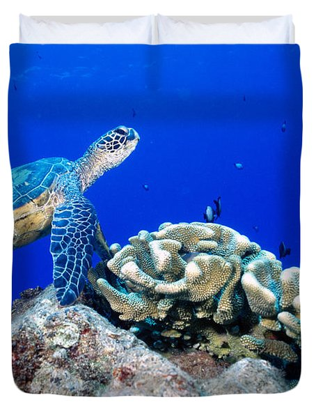 Green Sea Turtle Duvet Cover by Andrew G Wood and Photo Researchers