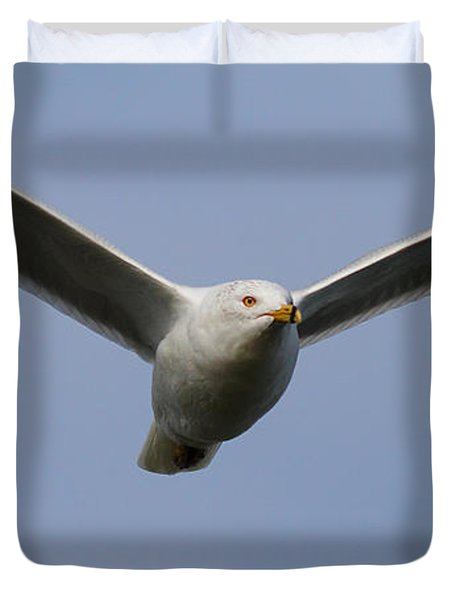 Gull In Flight . 7D12082 Duvet Cover by Wingsdomain Art and Photography