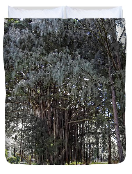 Hawaiian Banyan Tree Duvet Cover by Daniel Hagerman
