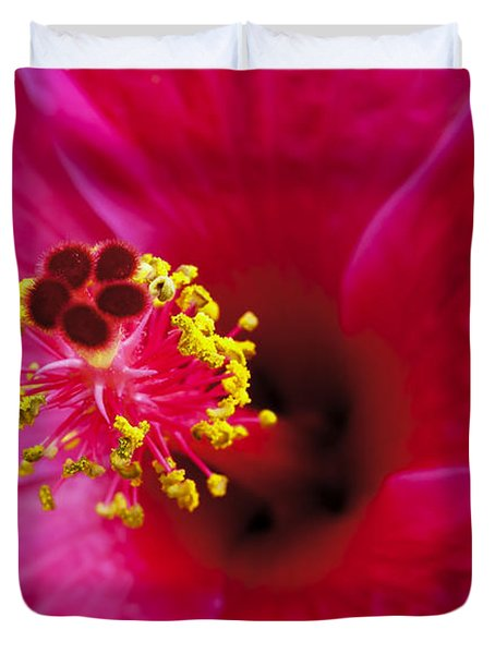 Hibiscus Macro Duvet Cover by Joe Carini - Printscapes