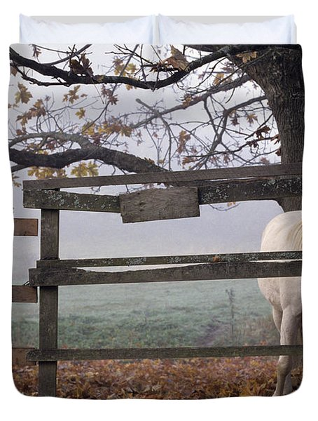 Horse at Fence Duvet Cover by Jim Corwin and Photo Researchers