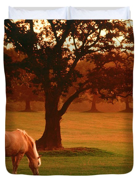 Horse Duvet Cover by Carl Purcell and Photo Researchers