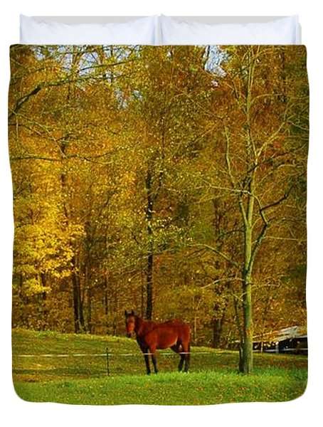 Horse In Autumn Duvet Cover by Kathleen Struckle