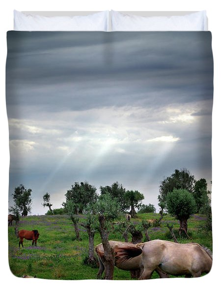 Horses Eating Duvet Cover by Carlos Caetano