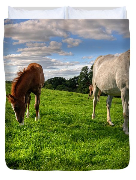 Horses Grazing Duvet Cover by Rob Hawkins