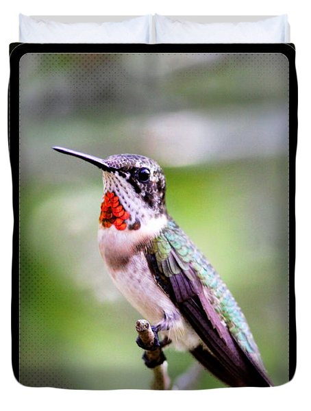 Hummingbird Card Duvet Cover by Travis Truelove