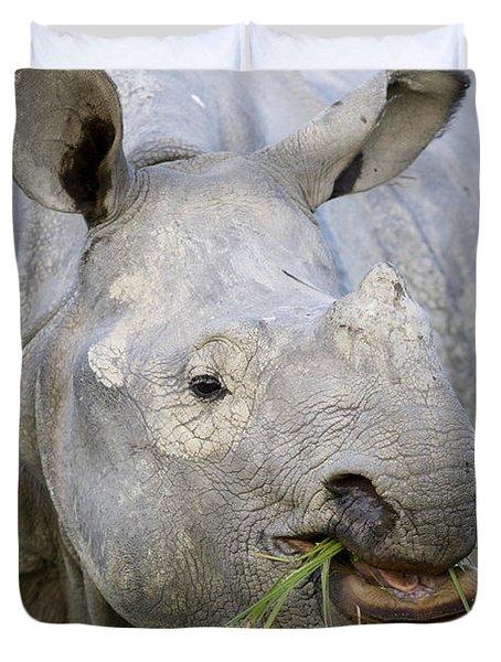 Indian Rhinoceros Grazing Kaziranga Duvet Cover by Suzi Eszterhas