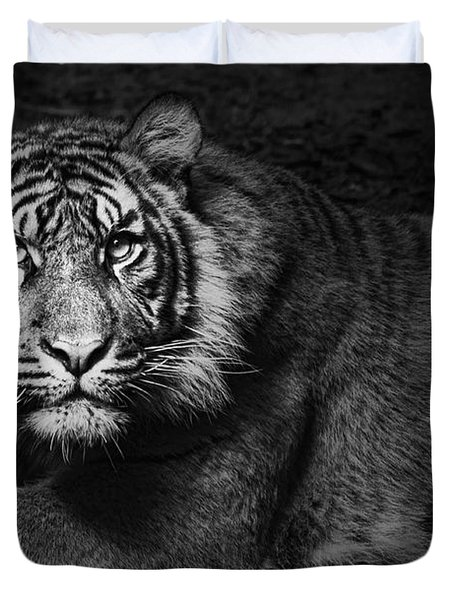 Intent Duvet Cover by Andrew Paranavitana