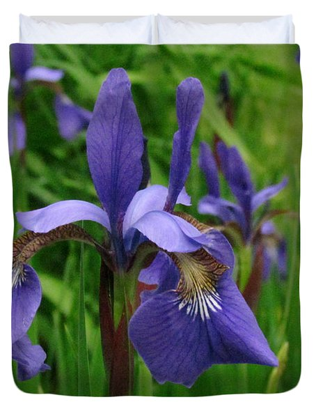 Irises Duvet Cover by Randi Shenkman