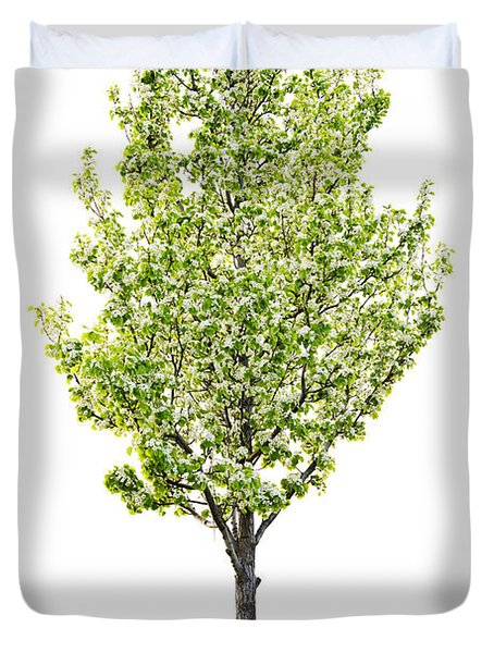 Isolated flowering pear tree Duvet Cover by Elena Elisseeva