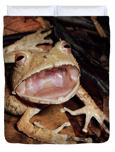 Johnsons Horned Treefrog Hemiphractus Duvet Cover by Michael & Patricia Fogden