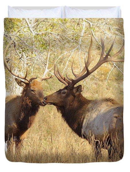Junior Meets Bull Elk Duvet Cover by Robert Frederick