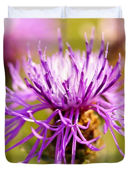 Knapweed Flower Duvet Cover by Elena Elisseeva