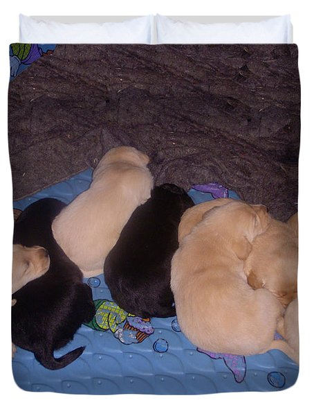 Lab Pups 3 Duvet Cover by Aimee L Maher Photography and Art Visit ALMGallerydotcom