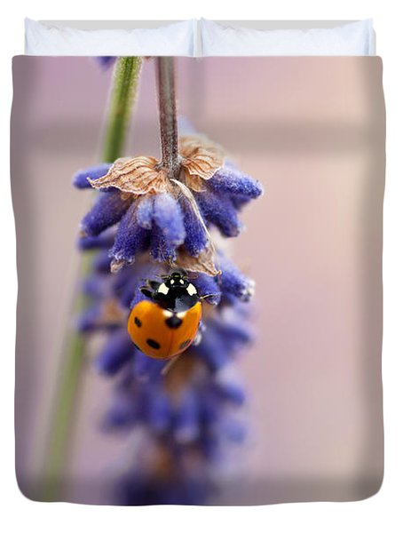 Ladybird And Lavender Duvet Cover by John Edwards