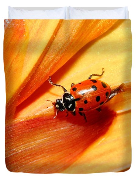 Ladybug On Orange Yellow Dahlia . 7d14686 Duvet Cover by Wingsdomain Art and Photography
