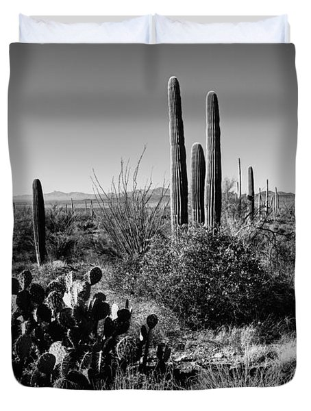 Late Winter Desert Duvet Cover by Chad Dutson