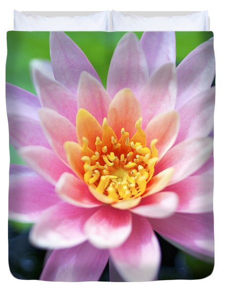 Light Pink Water Lily Duvet Cover by Kicka Witte