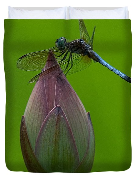Lotus Bud and Blue Dasher Dragonfly DL007 Duvet Cover by Gerry Gantt