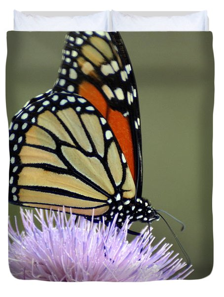 Magnificient Monarch Duvet Cover by Marty Koch
