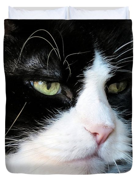 Maine Coon Face Duvet Cover by Michelle Milano