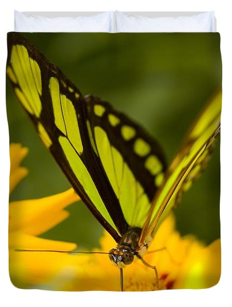 Malachite Butterfly On Flower Duvet Cover by Craig Tuttle