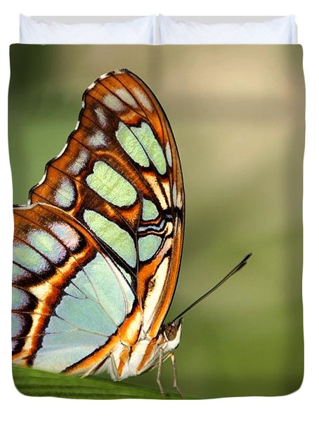 Malachite Butterfly Duvet Cover by Sabrina L Ryan