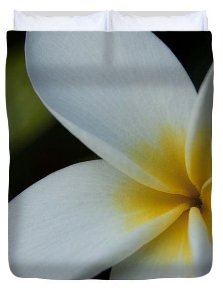 Mana I Ka Lani - Tropical Plumeria Hawaii Duvet Cover by Sharon Mau