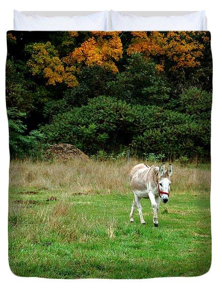 Marys Donkey Duvet Cover by LeeAnn McLaneGoetz McLaneGoetzStudioLLCcom