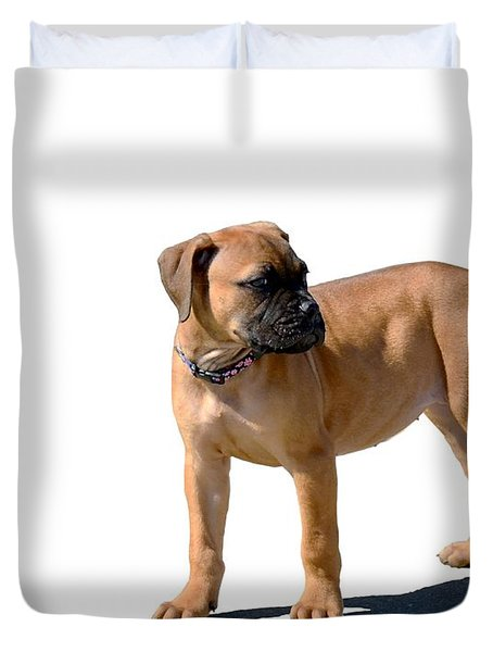 Me And My Shadow 4 Duvet Cover by Dale   Ford