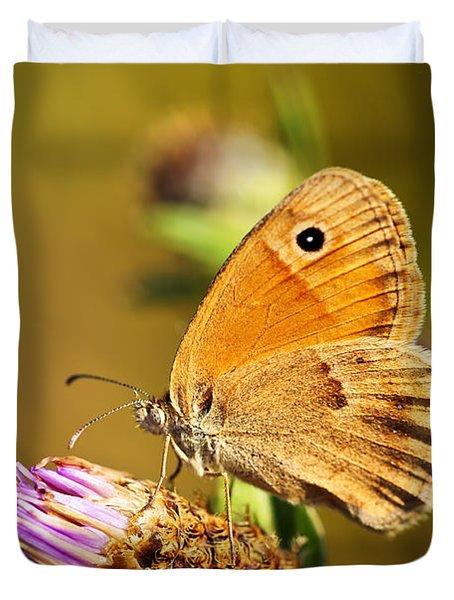 Meadow brown butterfly  Duvet Cover by Elena Elisseeva