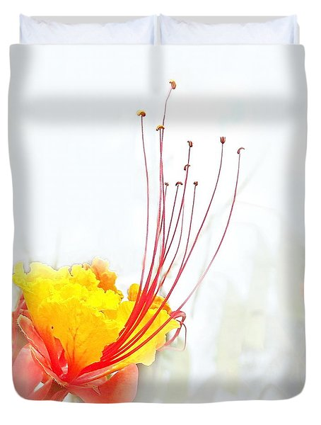 Mexican Bird Of Paradise Duvet Cover by Kume Bryant