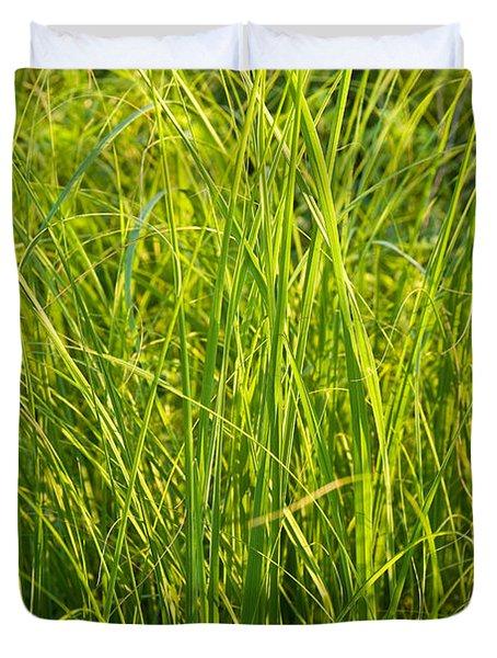 Midwest Prairie Grasses Duvet Cover by Steve Gadomski