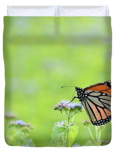Monarch And Mist Duvet Cover by JD Grimes