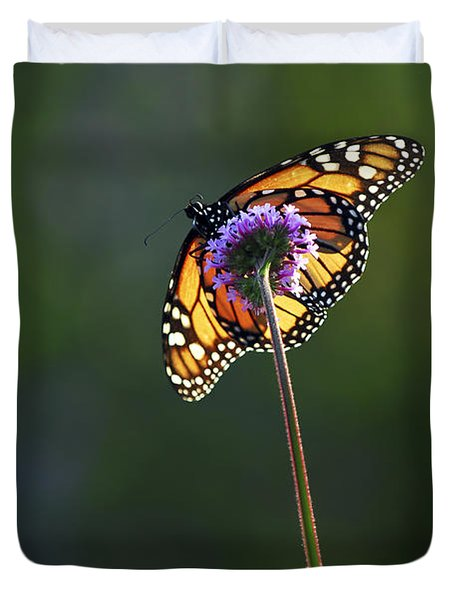 Monarch butterfly Duvet Cover by Elena Elisseeva