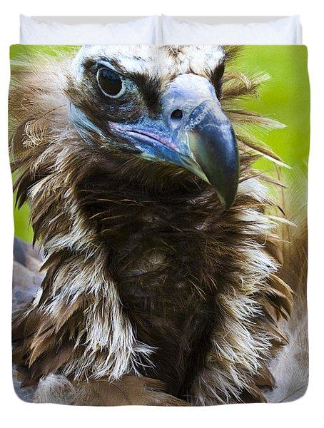 Monk Vulture 4 Duvet Cover by Heiko Koehrer-Wagner