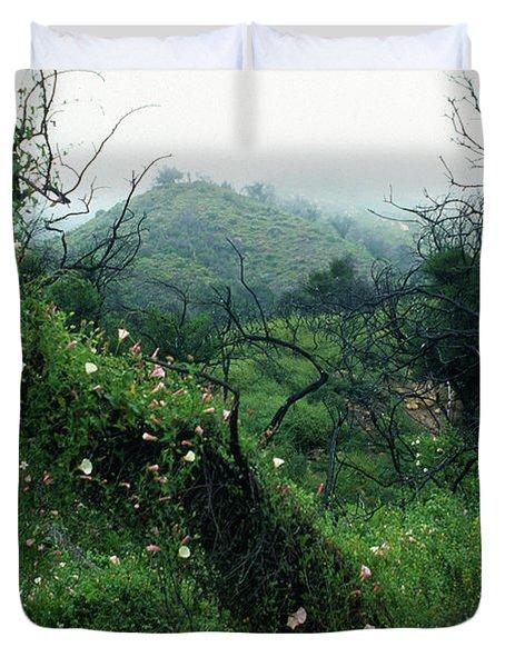 Morning Glories In Fog Duvet Cover by Kathy Yates