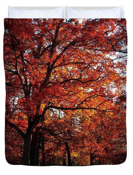 Morton Arboretum in colorful fall Duvet Cover by Paul Ge