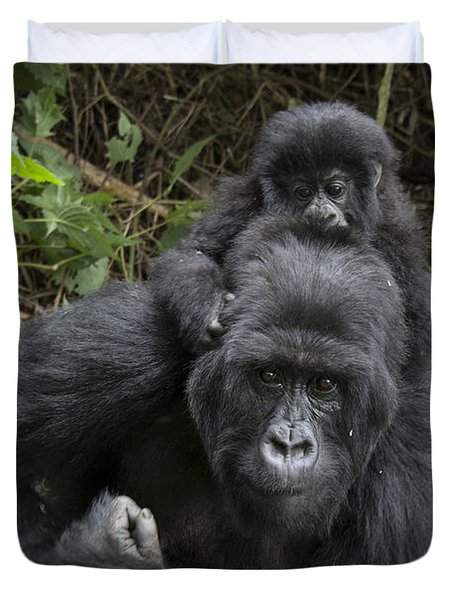 Mountain Gorilla Mother And 1.5yr Old Duvet Cover by Suzi Eszterhas