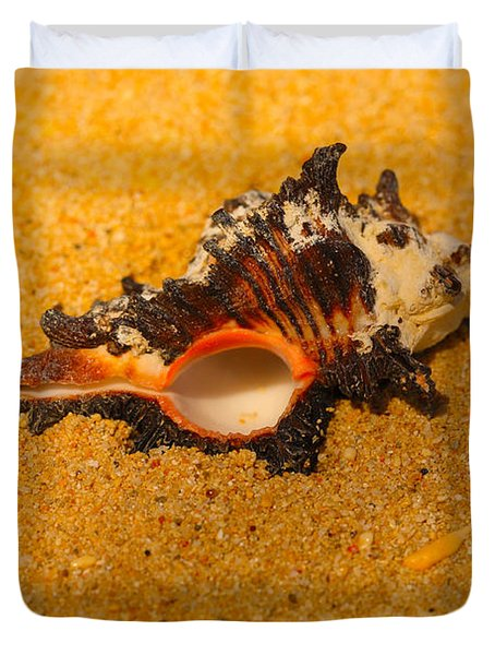 Murex Shell Duvet Cover by Cheryl Young