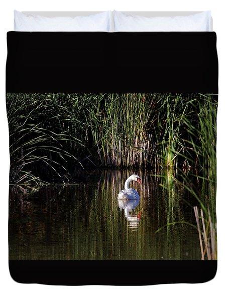 Mute Swan Duvet Cover by Jim Nelson