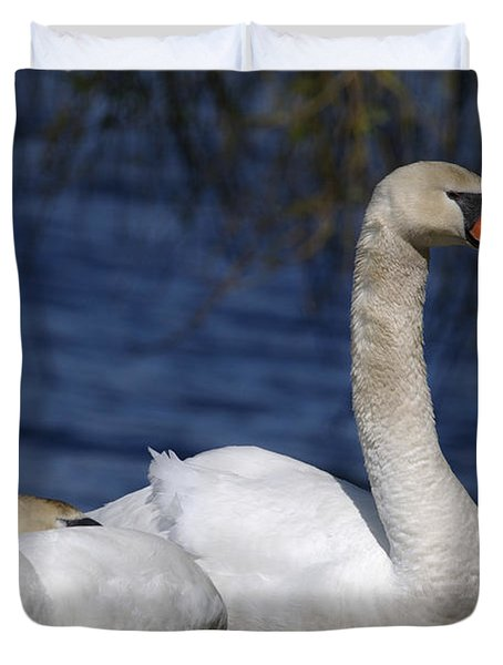 Mute Swans By Lagoon Duvet Cover by Sharon  Talson