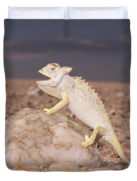 Namaqua Chameleon Chamaeleo Namaquensis Duvet Cover by Michael & Patricia Fogden