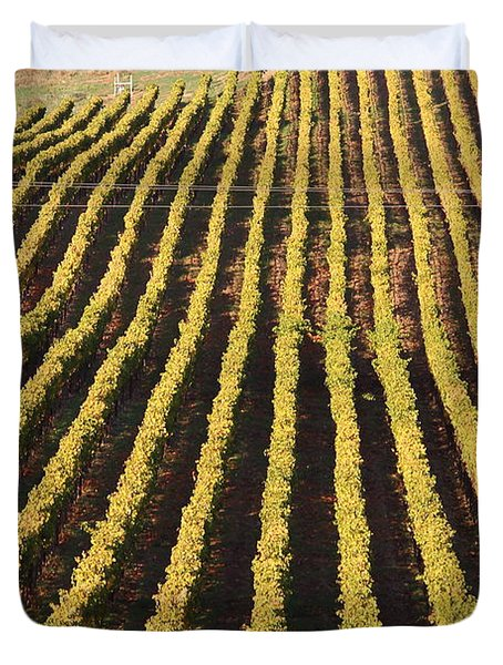 Napa Valley Vineyard . 7d9061 Duvet Cover by Wingsdomain Art and Photography