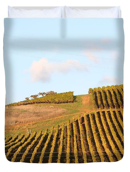 Napa Valley Vineyard . 7D9066 Duvet Cover by Wingsdomain Art and Photography