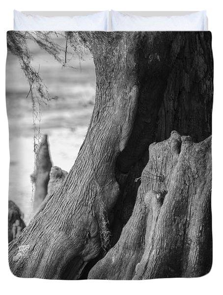 Natural Cypress Duvet Cover by Carolyn Marshall