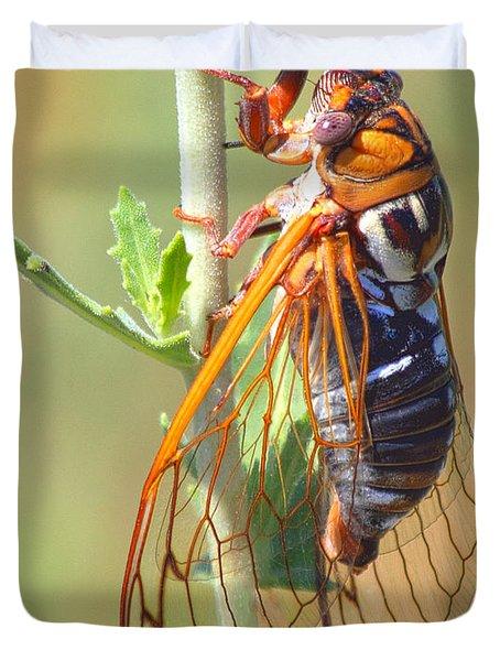 Noisy Cicada Duvet Cover by Shane Bechler