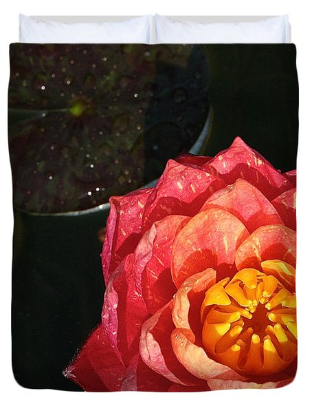 Nymphaea Duvet Cover by Susan Herber
