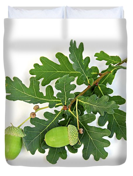 Oak branch with acorns Duvet Cover by Elena Elisseeva